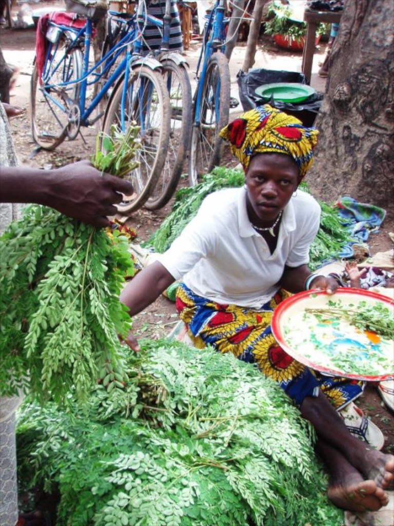 Moringa leaves being solid in the market.