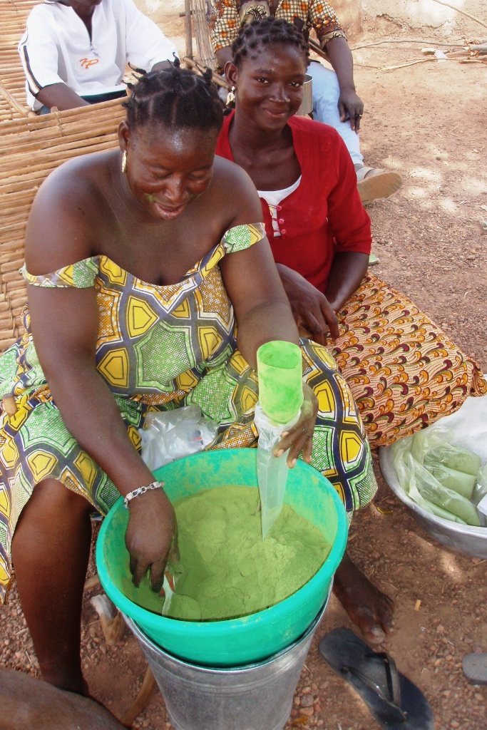 Preparation of moringa powder.